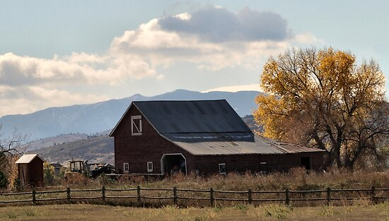 Mr. Jones had a barn ... by Barb Miller
