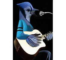 •♪♫•*¨*•BLUE JAY PLAYING GUITAR IPHONE CASE•♪♫•*¨*• by ✿✿ Bonita ✿✿ ђєℓℓσ