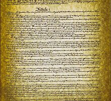 The Constitution of the USA vintage paper by Eti Reid