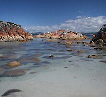 Eddystone Point Gulch by Adam  Davey
