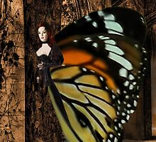 Ƹ̴Ӂ̴Ʒ THE BEAUTY OF A FEMALE BUTTERFLY SEARCING FOR THE UNKNOWN Ƹ̴Ӂ̴Ʒ by ╰⊰✿ℒᵒᶹᵉ Bonita✿⊱╮ Lalonde✿⊱╮