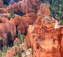 Bryce Canyon Utah Views 97 by Bo Insogna