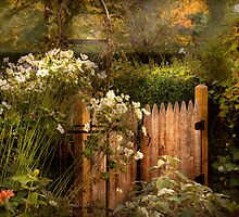 Country - Country autumn garden  by Mike  Savad
