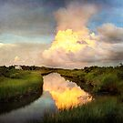 Bayou Storm Reflections by Jonicool