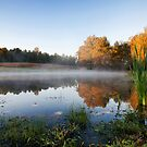 Morning Pond by Jonicool