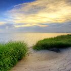 Grassy Beach Sunset by Jonicool