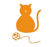 Cat Love Photographic Print