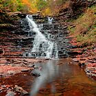 Fall Reflections of F L Ricketts Falls by Gene Walls