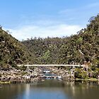 The First Basin Gorge Launceston Tasmania  by Melissa Dickson
