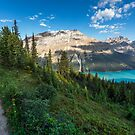 Peyto lake by David Geoffrey Gosling (Dave Gosling)