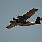 Warbirds Downunder 2013, Catalina by bazcelt