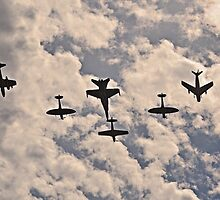 Warbirds Downunder, 2013 by bazcelt