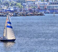 Summer Day at Lake Union by Sue Morgan