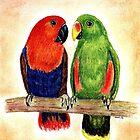 Eclectus Parrots by Oldetimemercan