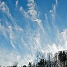 Clouds 1 by Carolyn Clark