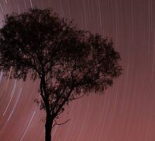 Under the Desert Sky, Australia by Nick Delany