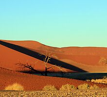 Dune 45 Sunrise by Jennifer Sumpton