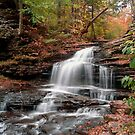 Onondaga Waterfall Transitions Into Fall by Gene Walls