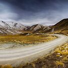 Lindis Pass - NZ by Maxwell Campbell