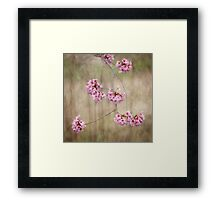 Poetic sakura Framed Print