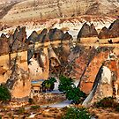 Fairy Chimneys-Downtown by Hercules Milas