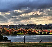Autumn In Washington, D.C. by Bernai Velarde