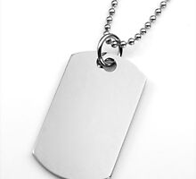 Dog Tag Jewelry   by stickyj