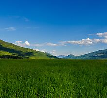 Open Country by RevelstokeImage