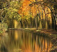 Autumn reverie by Lyn Evans