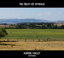 Fields Of Oswald by reflector