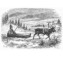 Small sleigh and reindeer by boogeyman