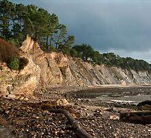 Ross Creek Beach by Kathleen Bishop