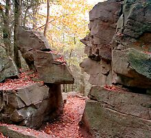 Stone Faced Confrontation (...look closely, please) by Gene Walls