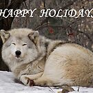 Happy Holidays by caybeach