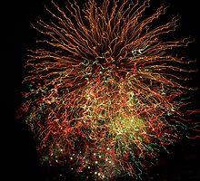 Fourth of July Fireworks by ValSteve59