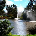 Pretty Fountain on a Windy day. Wyalong, N.S.W. by Rita Blom