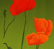 Poppies For iPhone by EmilyEstelle