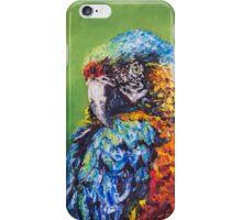 Parrot Challenge 1 iPhone Case/Skin
