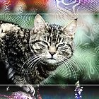 PsyCATdelic by blacknight