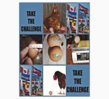 take the challenge by DMEIERS