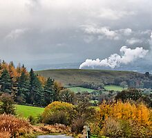 Autumn in Lancashire . by Irene  Burdell