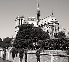 Notre Dame & The River Seine  by careball