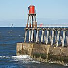 Harbour Entrance by John (Mike)  Dobson