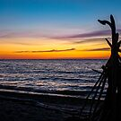 Driftwood Sentry at Sunset by Mikell Herrick