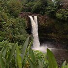 Rainbow Falls, The Big Island, Hawaii by jcimagery