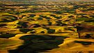 Golden Hills of Palouse by Dan Mihai