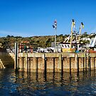 Entering The Harbour At Lyme Regis by Susie Peek