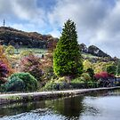 Park and Canal at Hebden Bridge by inkedsandra