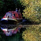 Anyone for coal on the oxford canal by Avril Harris