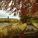 autumn tweed by dinghysailor1